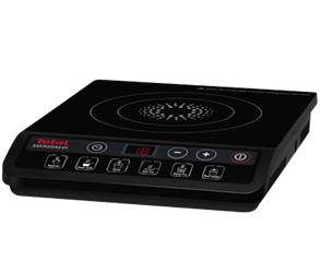 TEFAL 220 Volt Induction Cooker Hot Plate Burner HOB 220V 50Hz (NOT FOR USA)